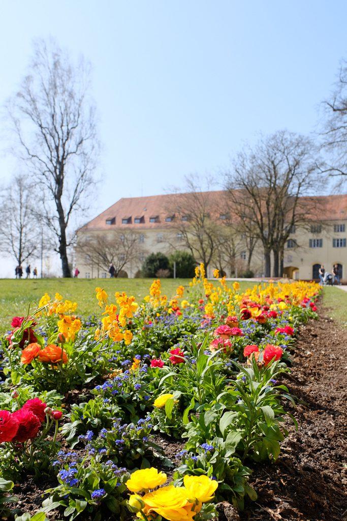 Hofgarten Freising