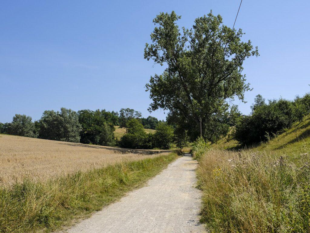 Kultur & Natur Rundweg Freising