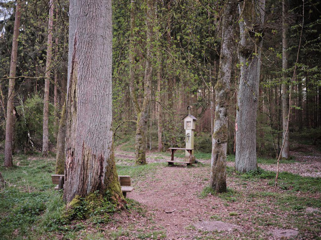 Heiliges Kreuz im Wippenhauser Forst
