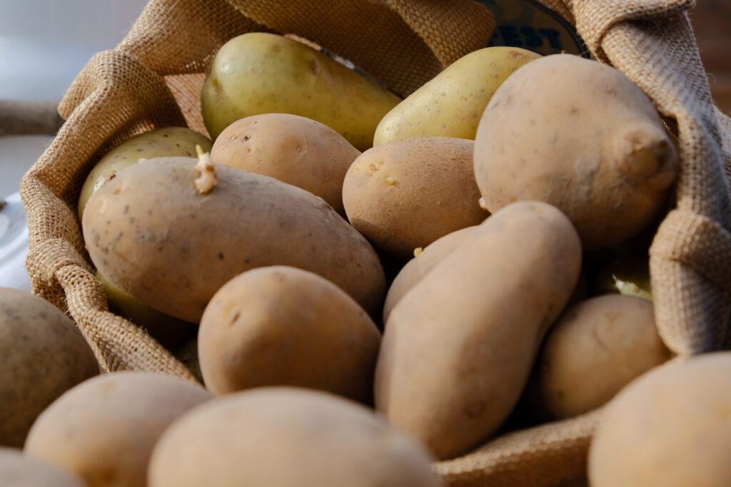 Bayerische Kartoffel Kampagne