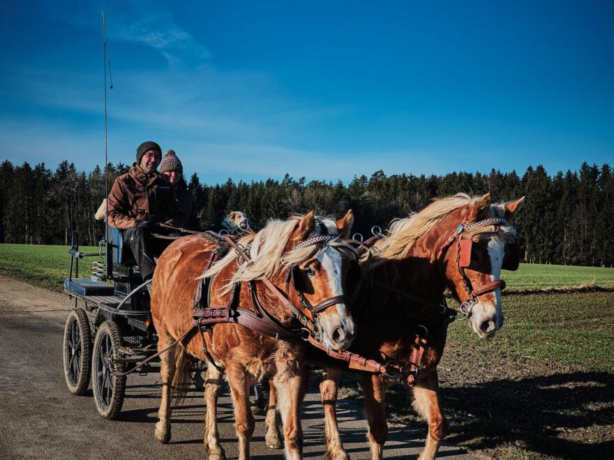 Pferdekutsche in Hirschbach